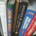 photo of books, schools, education
