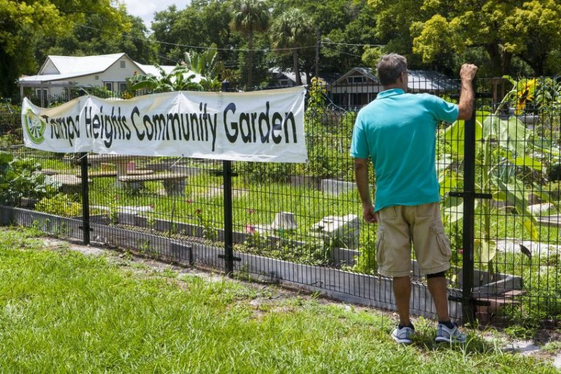Tampa Heights Community Garden. WMNF News.