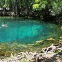 A  karst spring in Manatee Springs State Park. . A huge karst spring in Manatee Springs State Park