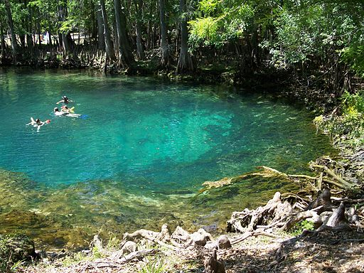 Wmnf Florida S Most Beautiful State Parks According To