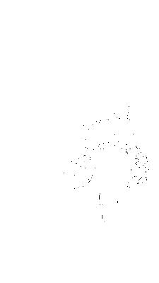 Large_4699
