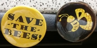 Medium_bee_against_monsanto_pins_sk_june_2014