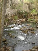 Medium_river