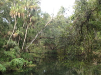Medium_hillsborough_river_sean_k_2008_sept_21_img_7117