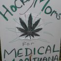 medical pot marijuana