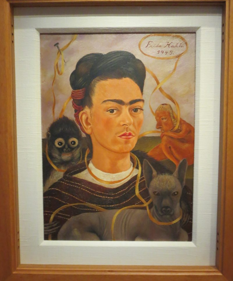 wmnf renowned mexican painter frida kahlo at the dali museum wmnf. Black Bedroom Furniture Sets. Home Design Ideas