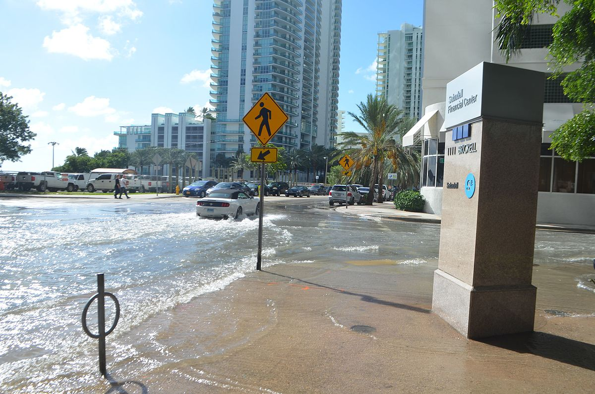 Sunny day flooding in Brickell, Miami during king tides in Oct., 2016