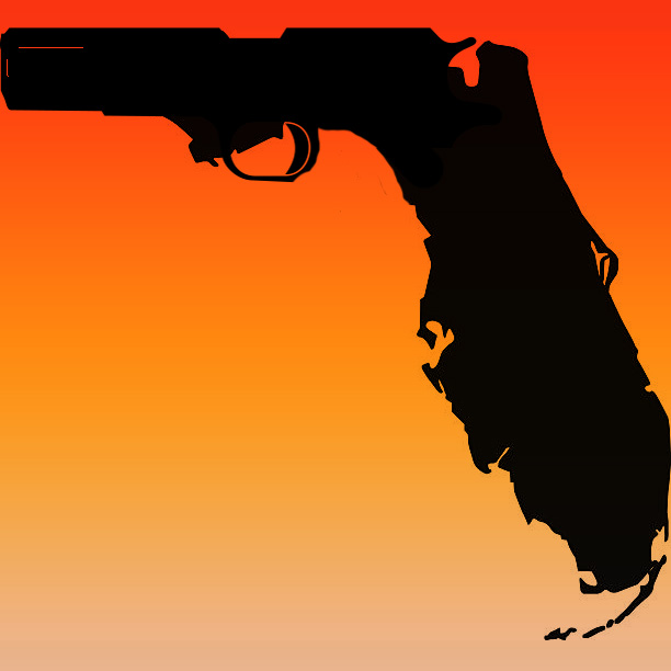 Florida Leaders Propose New Gun Laws After School