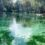 Sustainable Living : Florida Wildlife Corridor act
